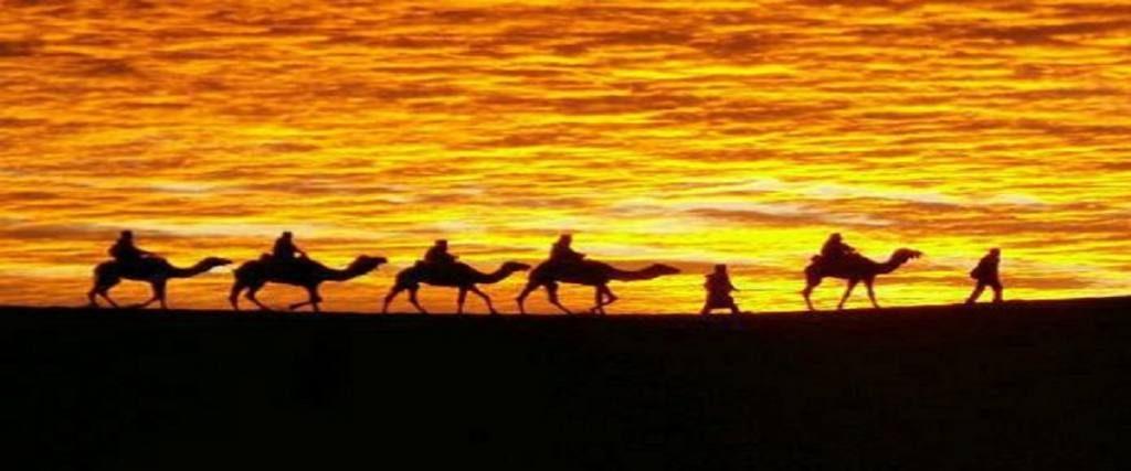9 Days Tour Casablanca Desert