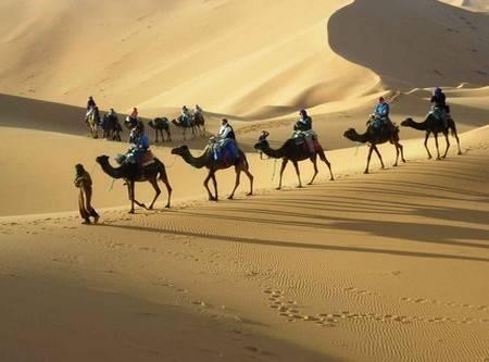 Morocco Atlas desert trips