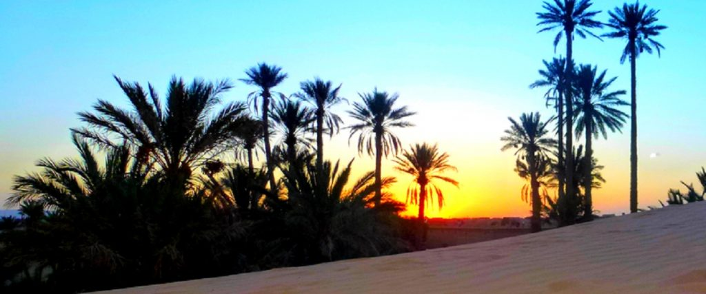 15 Days Marrakech Fes