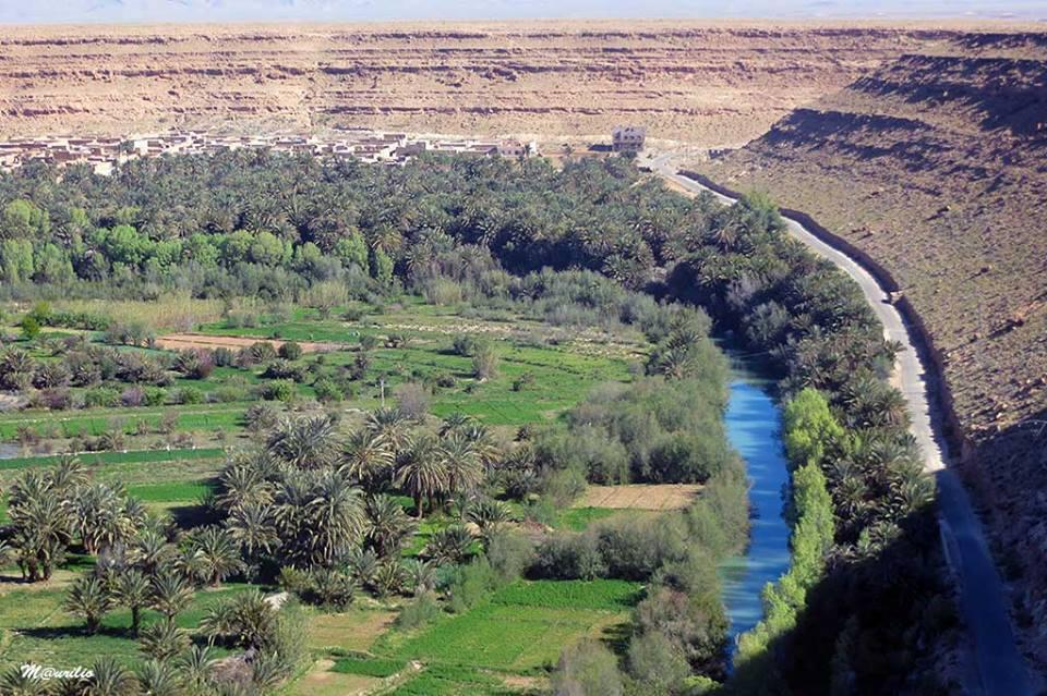 tafilalt oasis - ziz valley