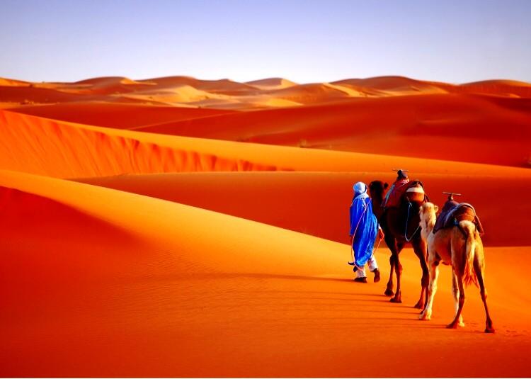 3 days desert tour