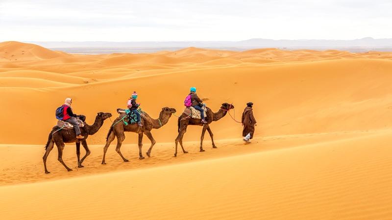 travel to desert marrakech sahara desert morocco