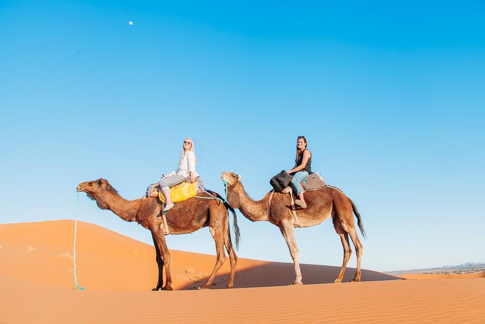 Marrakech to Zagora