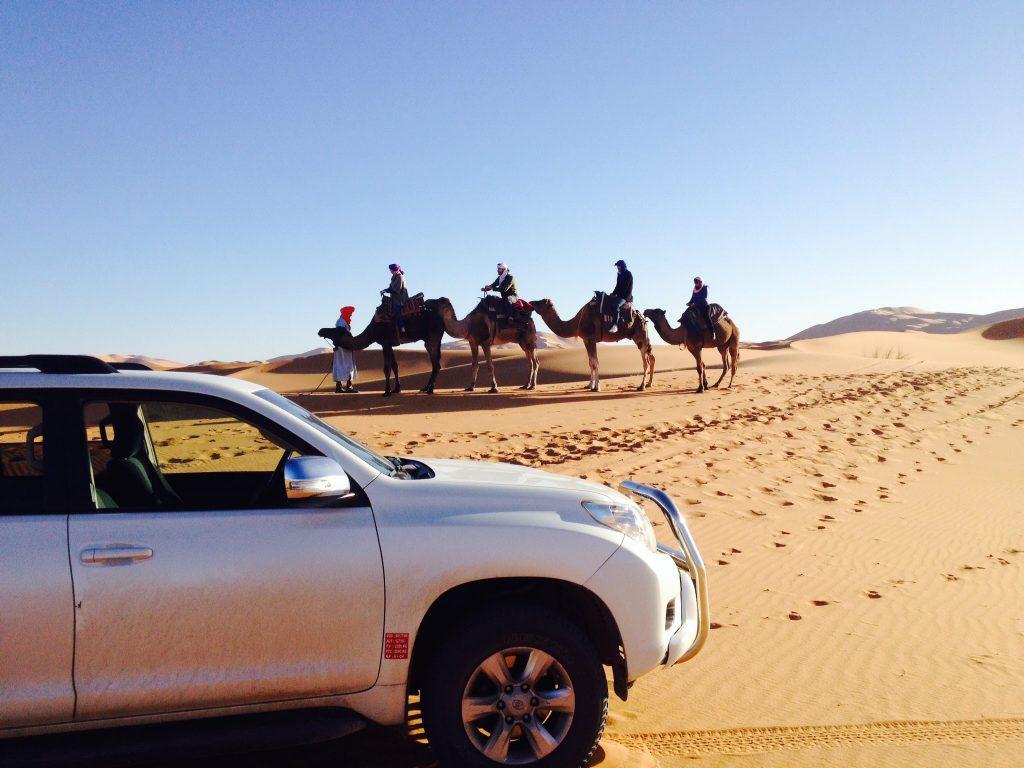 travel to desert marrakech